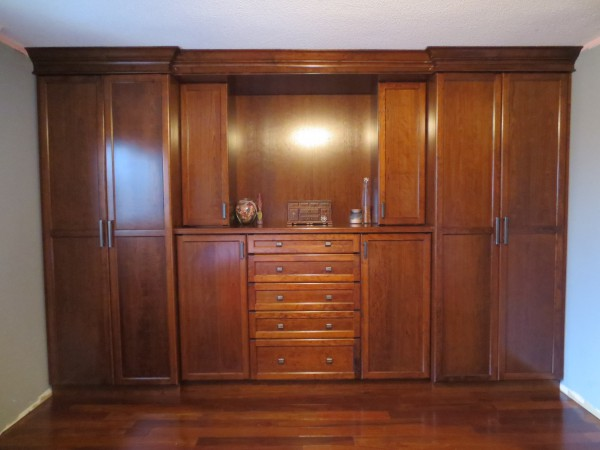Custom Closet & Entertainment Unit