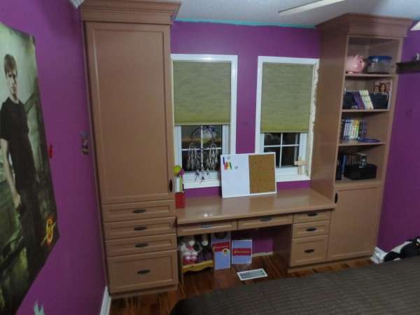 Wall Unit Desk